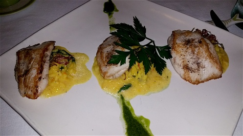 Kingfish with saffron risotto
